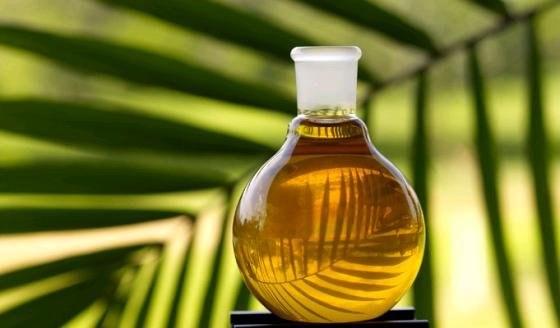 Как добиться стерильности растительного масла