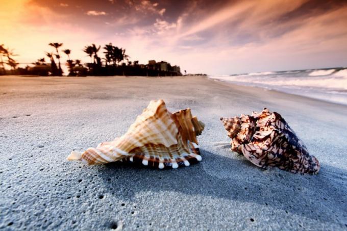 Мексика: какой курорт выбрать