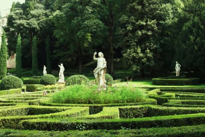 Как создать сад-лабиринт