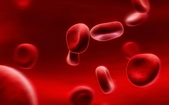A lot of red blood cells in the urine: why?