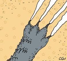 Какие обои устойчивы к кошачьим когтям?