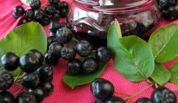 Что готовят из черноплодной рябины