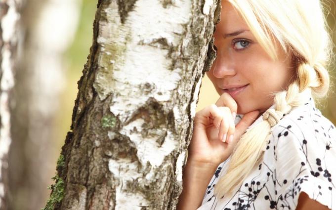 Почему берёза считается одним из символов России