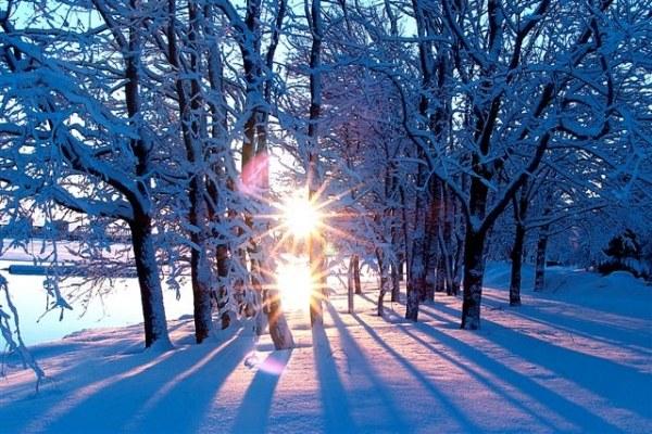 Чем пахнет зима