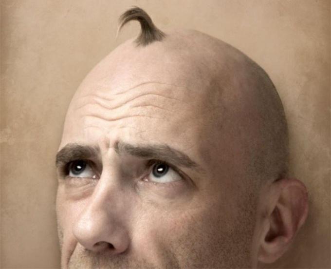 Почему мужские волосы жестче женских