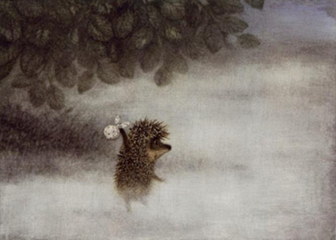 Что видел ёжик в тумане?