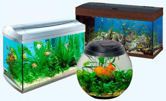 Как нарисовать аквариум карандашом