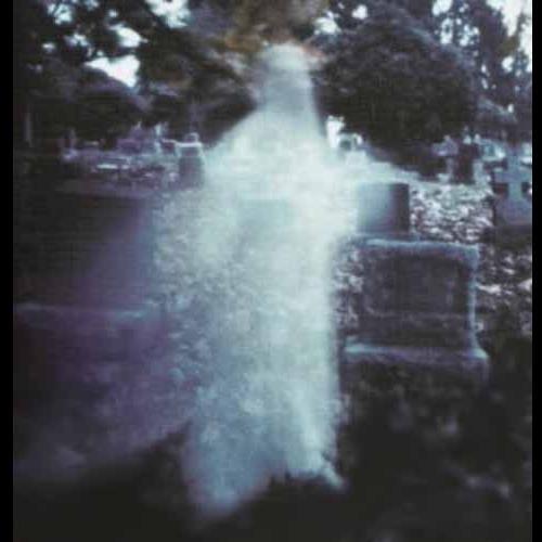 Как выглядит привидение