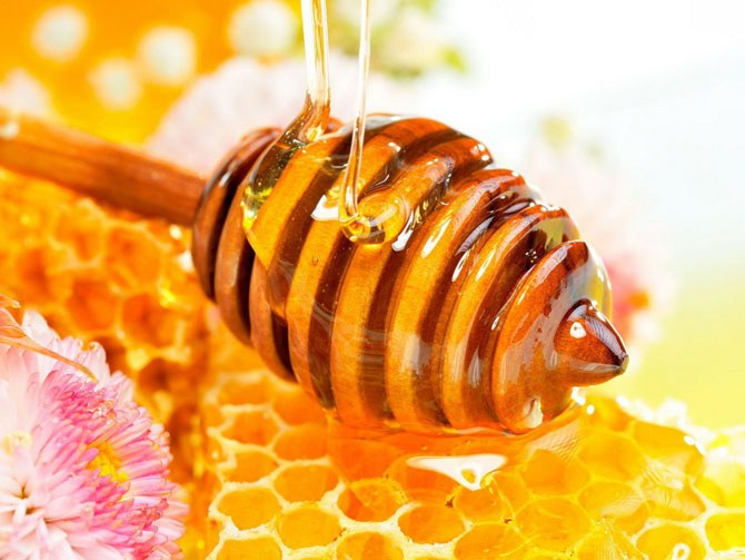 К чему снится мед