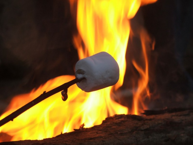 How to roast marshmallows on a campfire