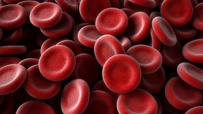 Зачем нужно знать свою группу крови