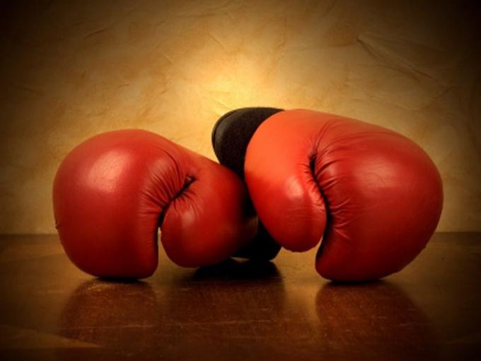 Как выбрать перчатки для боксерской груши