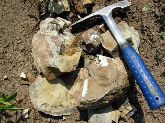 Для изучения геологии требуются базовые знания по ряду дисциплин