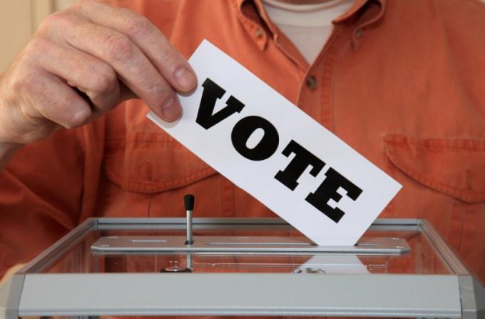 Зачем нужны веб-камеры на выборах