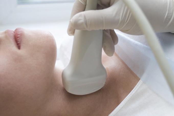 На Что влияет работа щитовидной железы