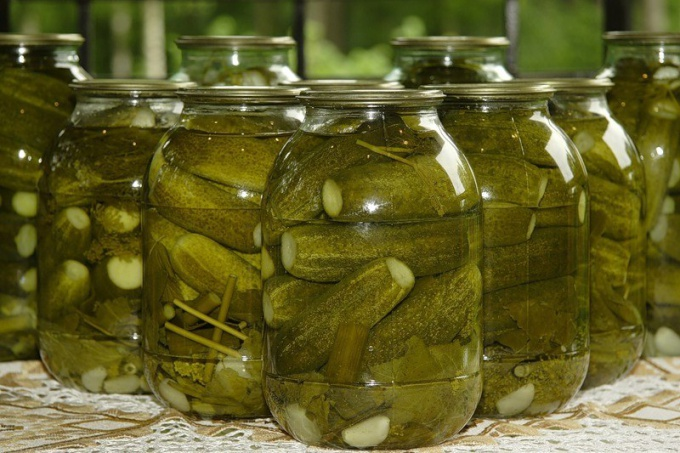 How to preserve cucumbers without vinegar