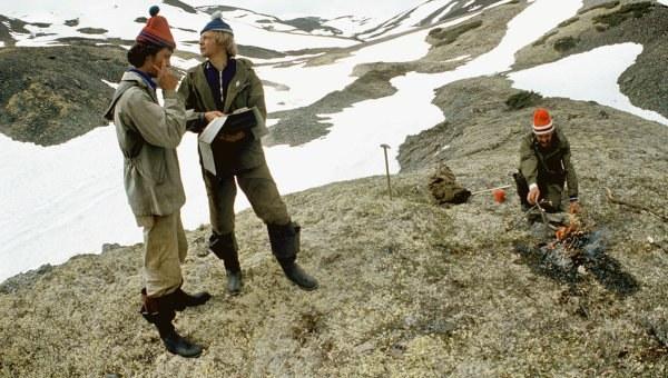 Что ищут геологи