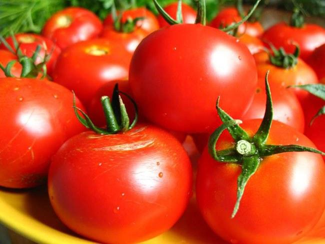 Польза и вред помидоров