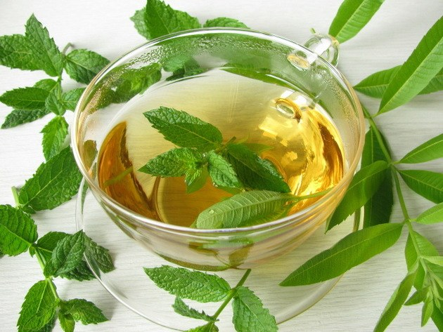 How peppermint tea affect the potency