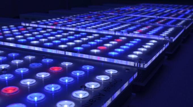 Как выбрать светодиоды