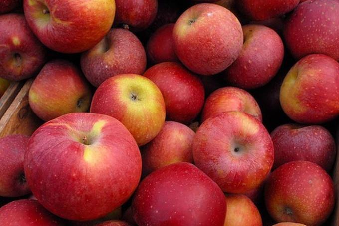 Чем полезен яблочный пектин