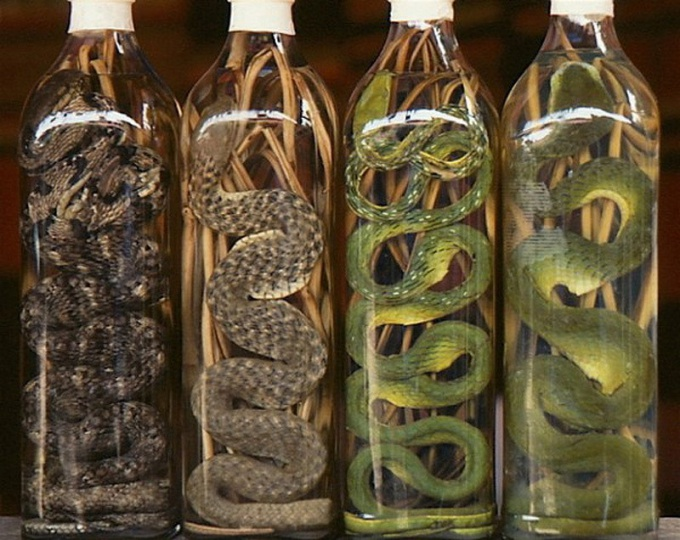 Why in bottles of alcohol lay a snake
