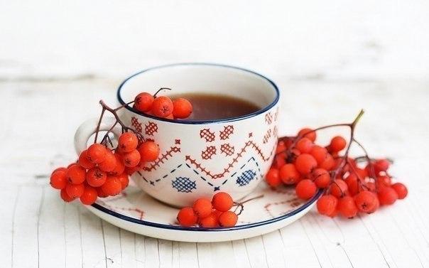 5 натуральных напитков для укрепления здоровья и иммунитета