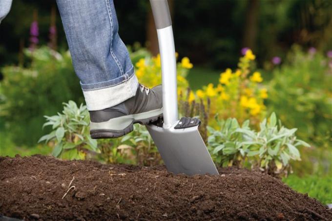 Нужна ли перекопка земли осенью: мнения агрономов