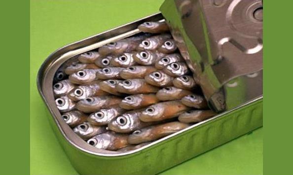Как выбрать съедобные рыбные консервы?