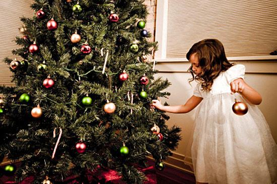 Как установить живую новогоднюю елку