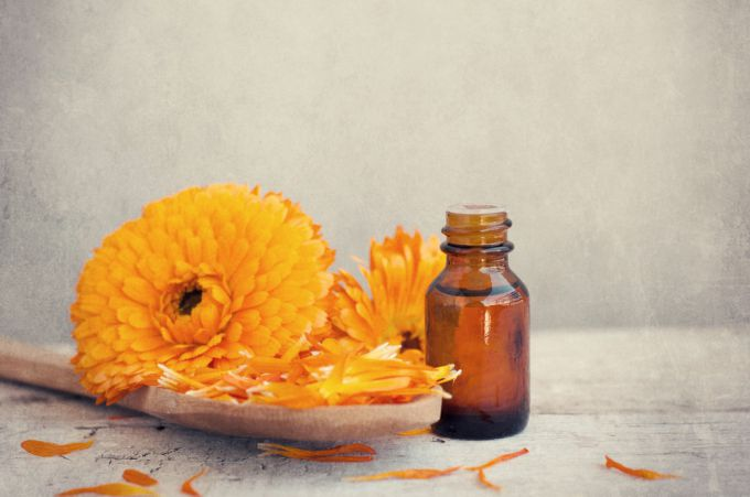 Application of calendula oil in cosmetology