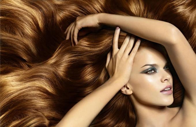 Твёрдое масло для кончиков волос dnc отзывы