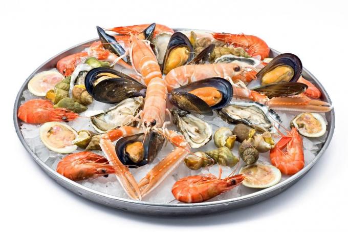 Как выбрать правильные морепродукты