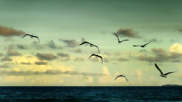 Духовный поиск - это свобода.