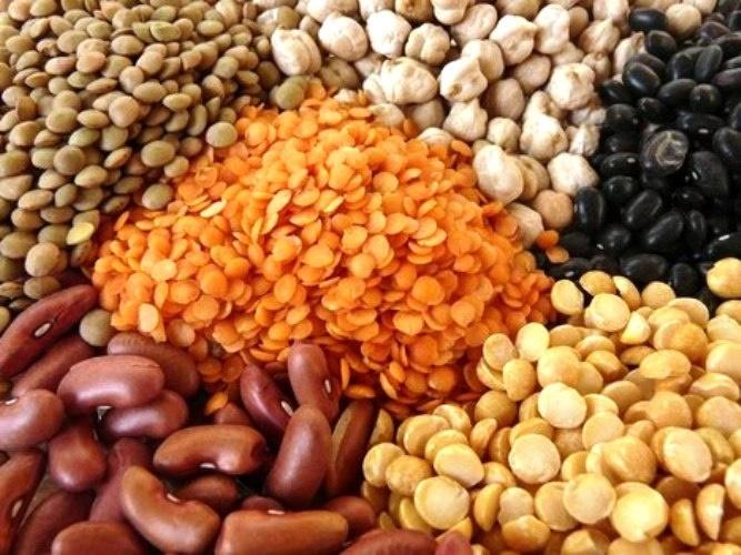 Вегетарианство. Растительные источники незаменимых аминокислот