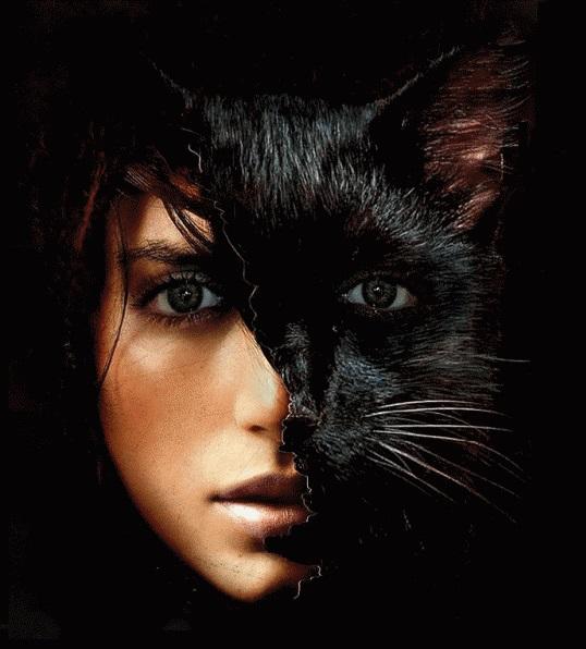 Как превратиться в кошку на праздник: особенности макияжа и костюма
