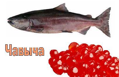 Что такое икра лососевых