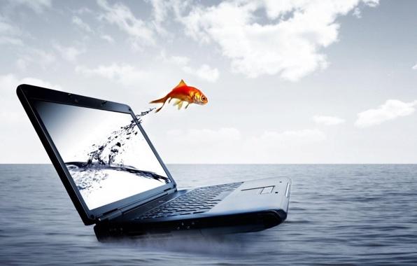 Шуточные гадания на компьютере