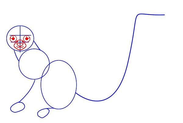 Как нарисовать лемура поэтапно