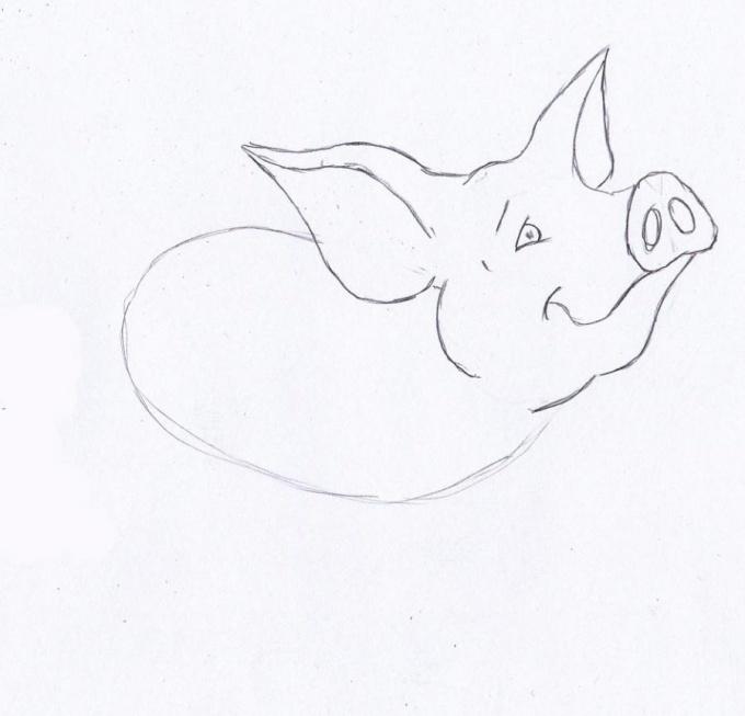 Как нарисовать поросёнка карандашом поэтапно