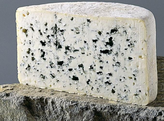 Как называется сыр с плесенью