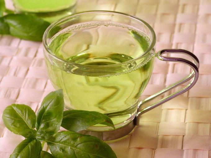 Какой выбрать хороший зеленый чай