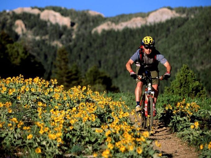 Какой лучше выбрать горный велосипед