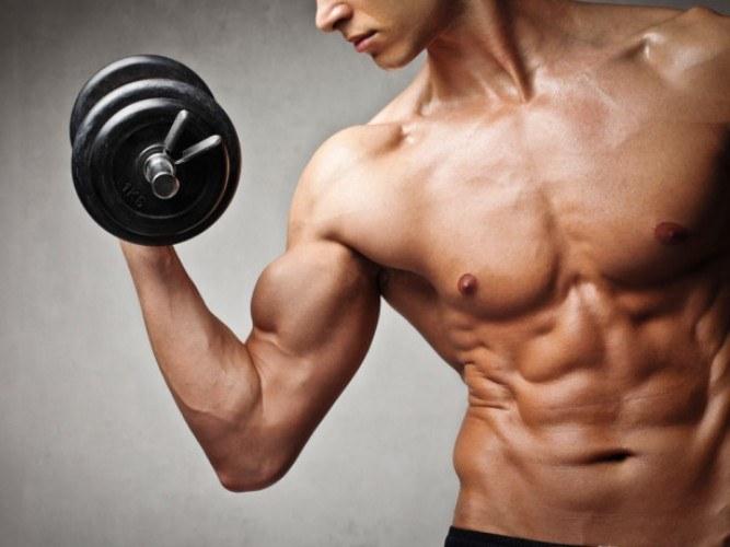 Как растут мышцы при силовых нагрузках
