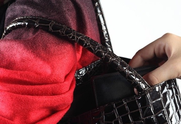 Stealing purse from the bag to a professional thief — is simple enough