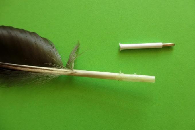 Шариковые ручки из пера птицы удобны и красивы