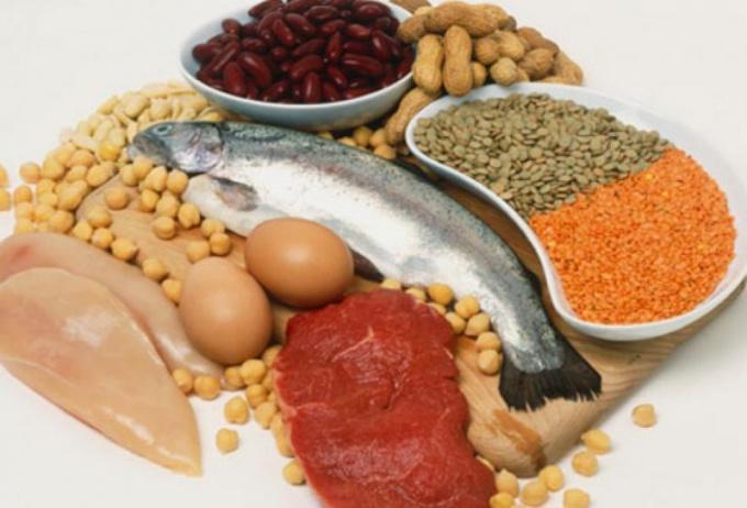 В какой пище много белка