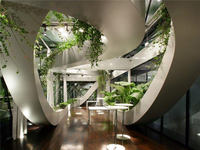 Подбор комнатных растений по энергетике