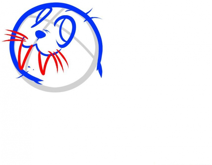 Как нарисовать маленького Моржа поэтапно