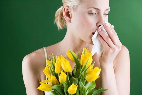 Как предотвратить аллергию на пыльцу растений